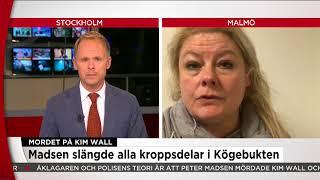 Ubåtsfallet: Madsen erkänner att han styckat Kim Wall - Nyheterna (TV4)
