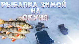 Мелкий окунь атакует мормышку Зимняя рыбалка на крюки Сибирские морозы