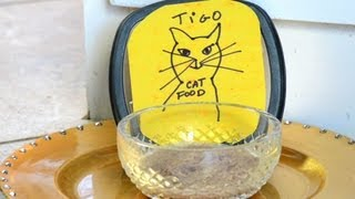 Homemade Cat Food : How to Make Cat Food