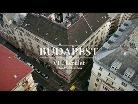 Budapest VII. kerület, Nagy Diófa utca 19