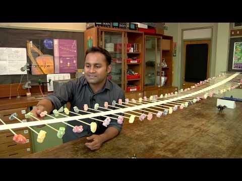 Wave Machine Demonstration