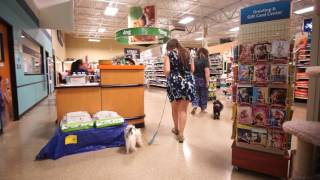 Hestia and Gigi in Petsmart 2