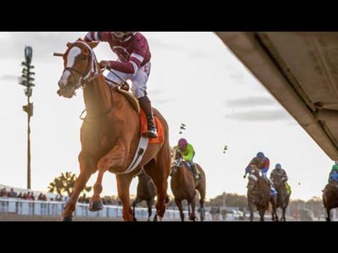 2020 Rachel Alexandra Stakes