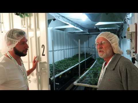 Grow Marijuana: See 48 Cannabis Indoor Grow Rooms at Good Meds Part 11