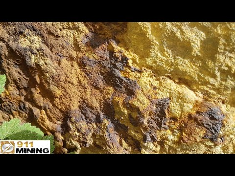 Sampling A Pyritic Vein For Gold & Silver