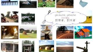 Урок 315 село