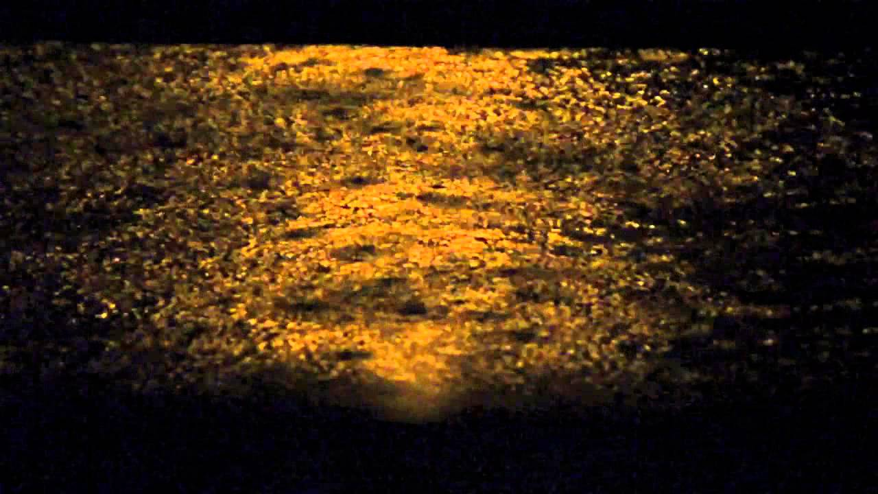 Nikon D7100 60fps low light. Rainy night - Slow Motion Test 1 & Nikon D7100 60fps low light. Rainy night - Slow Motion Test 1 - YouTube