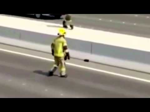 Abu Dhabi police and fire fighters stopped traffic in main road to save kitten's life