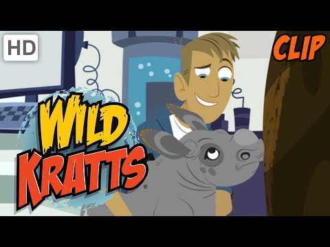 Wild Kratts - Why We Love Nature and Wild Animals