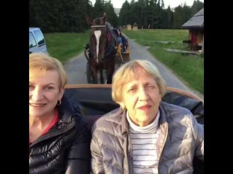 Trafalgar (CostSaver) - Highlights of Poland - June 2017