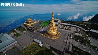 Enjoy the tempting view of the golden Buddha statue shining under the sunlight on Mount Emei