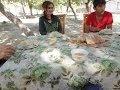 Tajikistan 2013 Dushanbe & Khorog タジキスタン旅行 ドゥシャンベとホログ