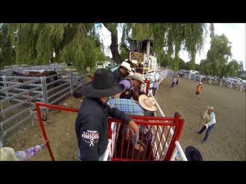Open BullRiding NZ (Waimate)