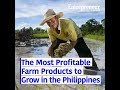 The Most Profitable Farm Products to Grow in the Philippines