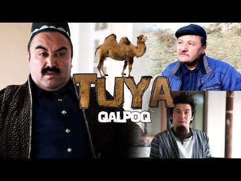 Qalpoq - Tuya | Калпок - Туя (hajviy ko'rsatuv)