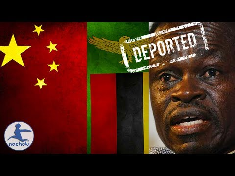 PLO Lumumba Deported From Zambia For Criticizing its Chinese Overlords