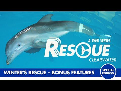 Winter's Rescue - Rescue Clearwater Season 1 Bonus Episode