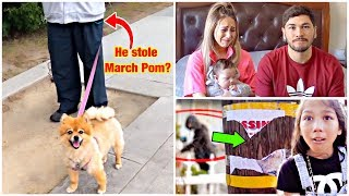 WE BELIEVE SOMEONE STOLE OUR PUPPY MARCH POM!! *Part 2*
