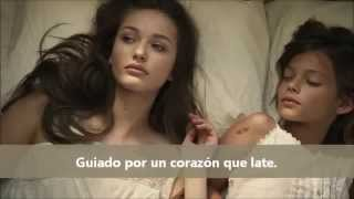 Avicii  Wake Me Up - sub  (TheMaiqel)