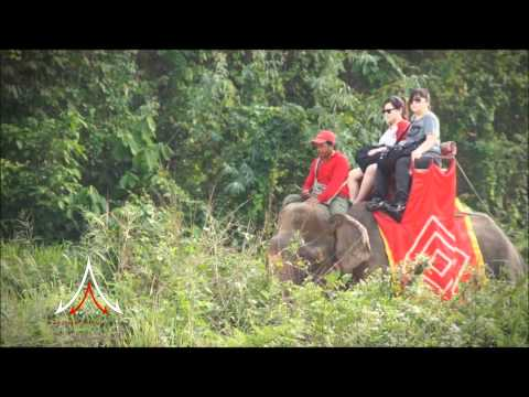 Pattaya Attractions – Chang Thai Thong Safari