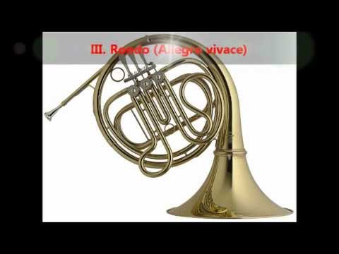 Mozart - Horn Concerto No. 4 in E flat, K. 495 [complete]