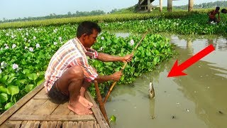 Fishing with beautiful nature | Real Village Fishing by Daily Village Life