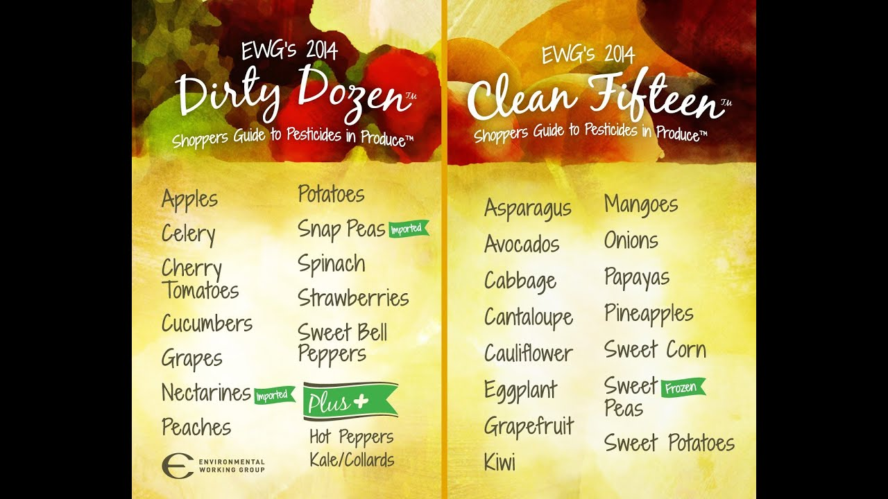 List Of Healthy Foods To Eat On A Diet