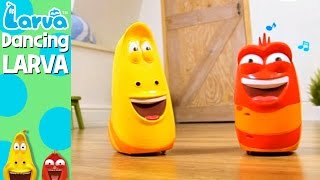 dancing larva - fun larva product - play with larva