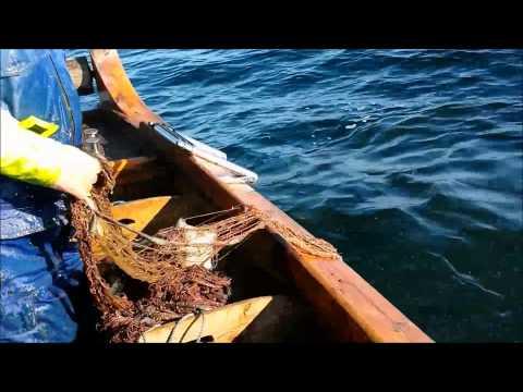 Fiske i Bjørnafjorden