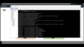 ZTP Dynamic Provisioning for Arista switches (using EVE-ng and Devuan)