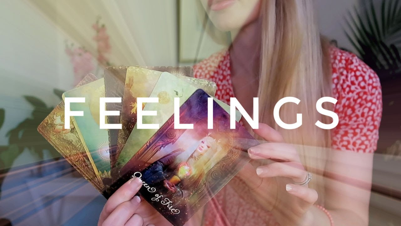How Does He Feel? || How is he/she feeling right now? PICK A CARD Tarot (Timeless)