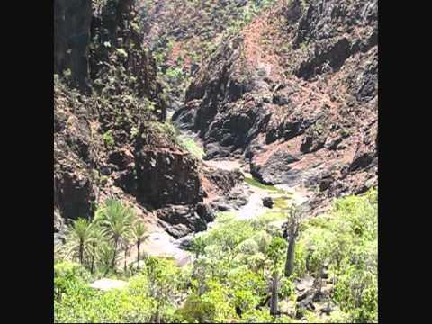 Socotra * Yemen 2012