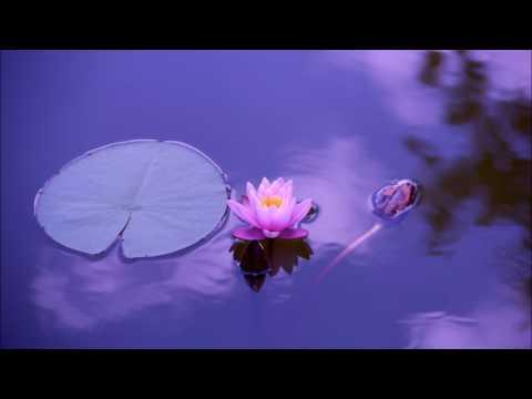 Meditacija disanjem - Čišćenje druge čakre