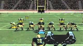 EA Sports NCAA Football 2004 - PS2 Tutorial - Running the Option