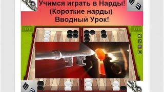 Учимся играть в Нарды! (Короткие нарды) Вводный Урок!