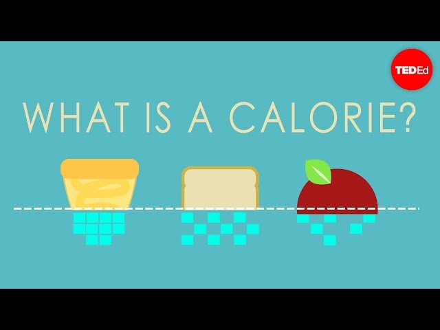 【TED-Ed】What is a calorie? - Emma Bryce