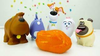 Видео для детей: собаки в поисках еды