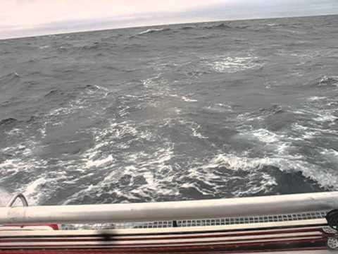 Sailing Denmark Strait