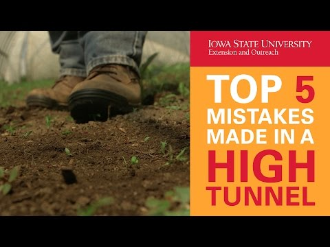 Top 5 Mistakes Made in a High Tunnel