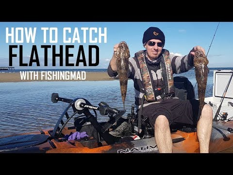 How To Catch Flathead On Bait, Soft Plastics & Lures | Flathead Fishing