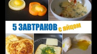 Что приготовить на завтрак? 5 идей завтраков с яйцами   Простые рецепты