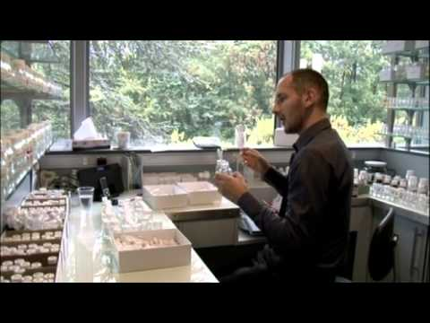 Givaudan perfumery school paris