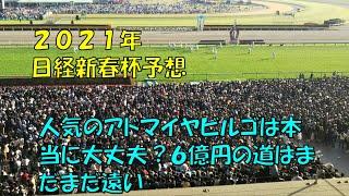 2021年 日経新春杯予想【ぜんこうの競馬予想 アドマイヤビルゴは大丈夫?6億稼ぐ道はまだだまだ遠い?】
