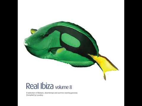 Real Ibiza Volume 8 (Continuous Mix)