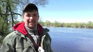 Рыбалка на фидер на реке в большой подъём воды Рыбалка весной