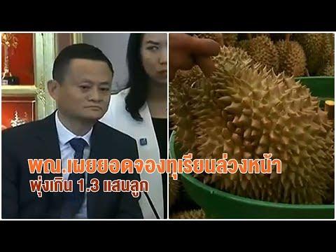อานิสงส์แจ็ค หม่า! ยอดจองทุเรียนไทยผ่านทีมอลล์ทะลุ 1.3 แสนลูก สวนทุเรียนจันท์ยิ้มราคาพุ่ง