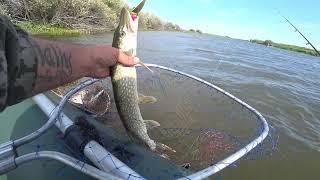 Ловим щук на езере Глубокое Рыбалка в Северном Казахстане