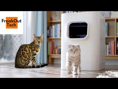 5 Amazing Inventions Your Cat Will Love