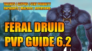 WoD 6.2 Feral Druid PvP Guide: Talents, Glyphs, Stat Priority, Enchants, Macros, Rotations [WoW]