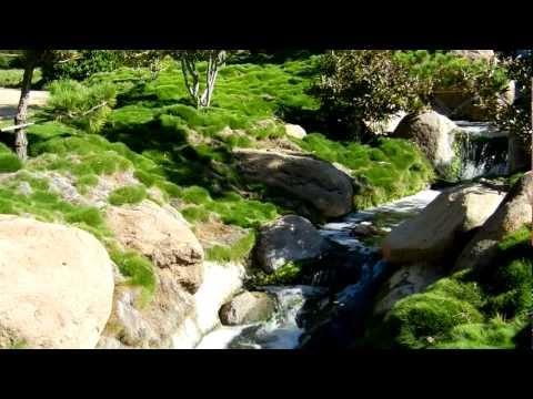 Van Nuys, California. Relaxing Waterfall Sounds in full HD